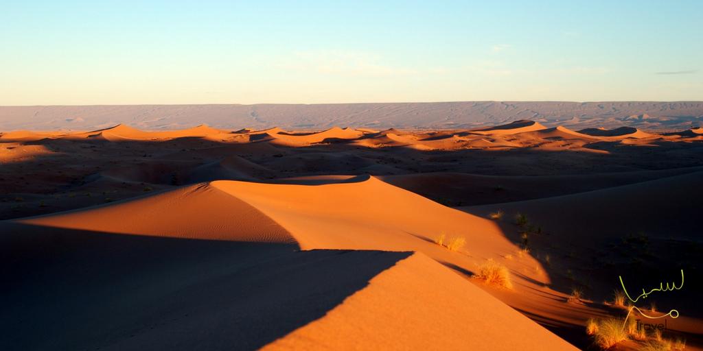 Zandduinen bij Merzouga