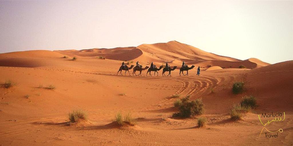 Karavaantochten door de Sahara