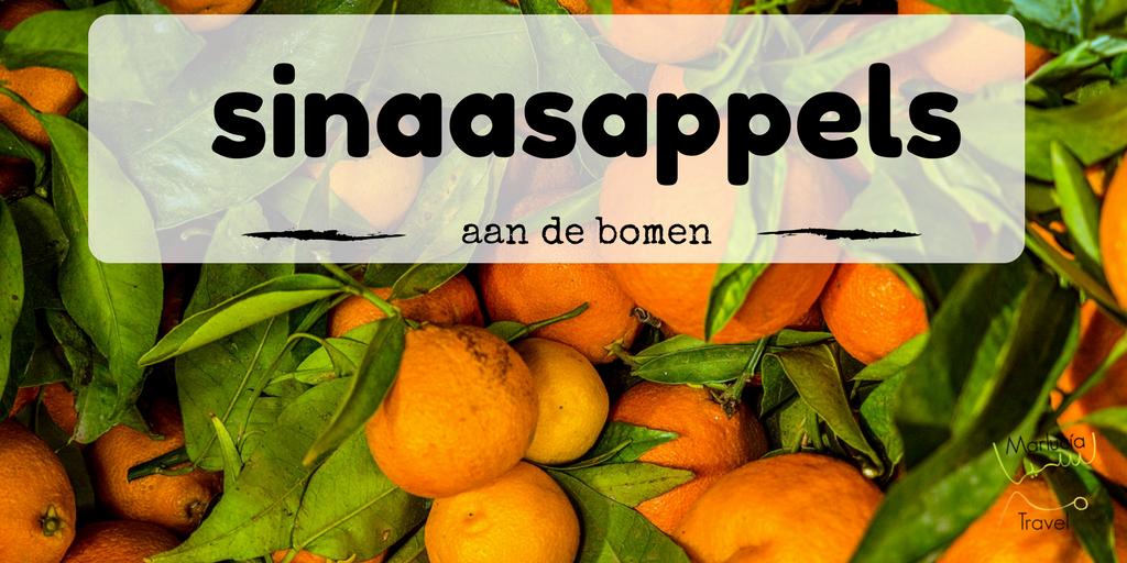 sinaasappels Marokko