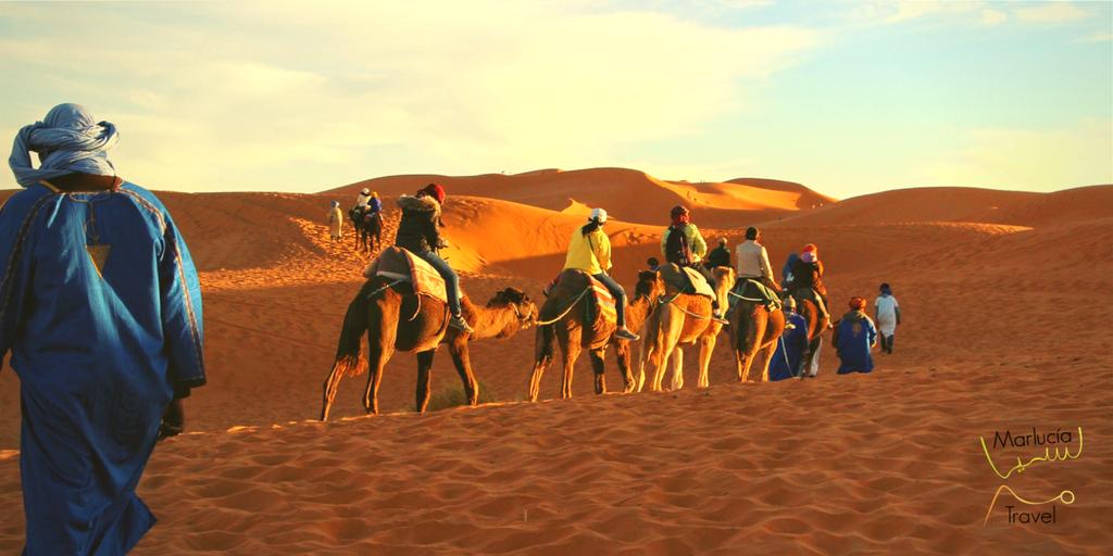 Rondreis door woestijn