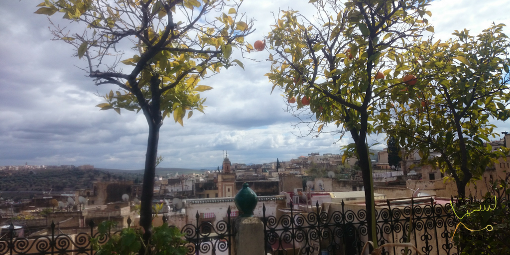 uitzicht over medina Fès
