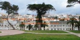 De Tuinen van Mendoubia