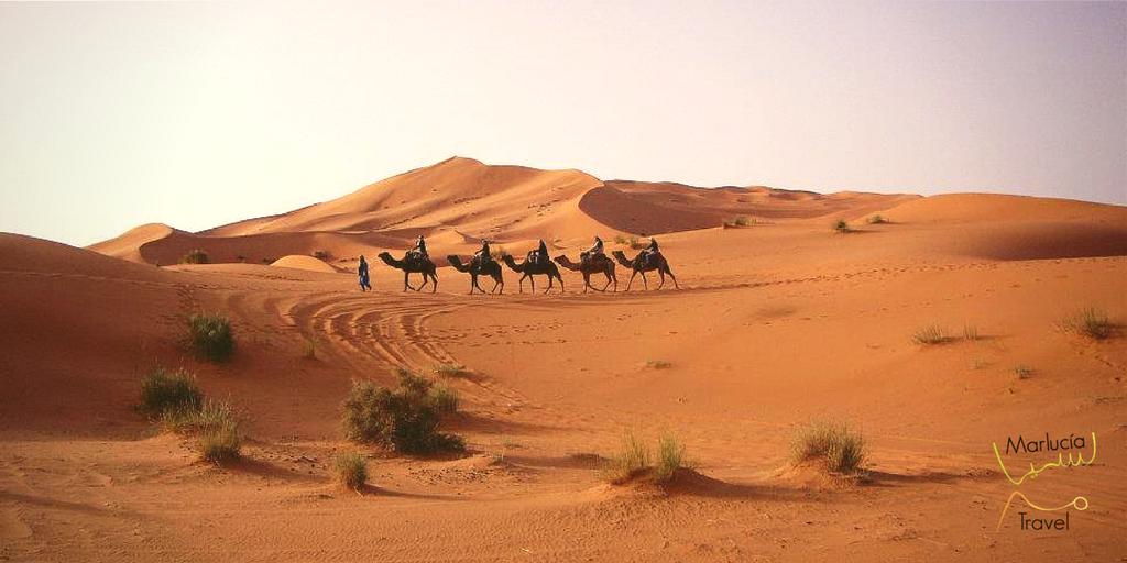 trekking westijn sahara